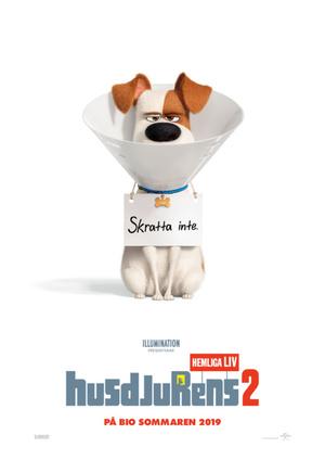 Sommarbio: Husdjurens hemliga liv 2 (Sv. tal)